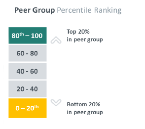 Chart scale peer group percentile ranking
